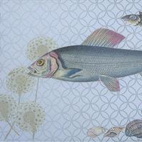 Meeresgetier