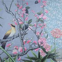 Pirole im blühenden Kirschbaum